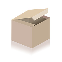 SXT1600 XL electric scooter