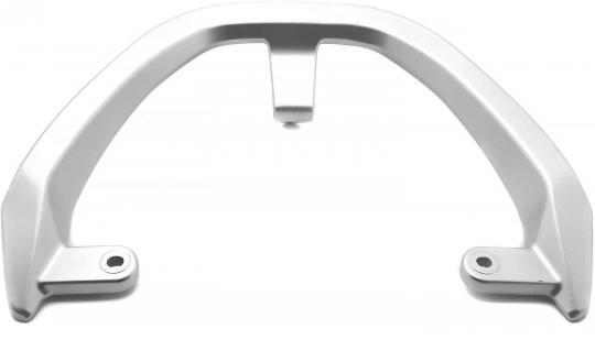Grab handle / luggage rack